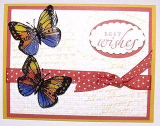 Butterflies_velum
